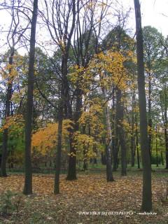 Парк Екатерингоф.