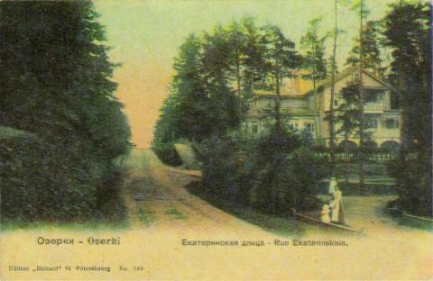 Озерки, Екатерининская улица.