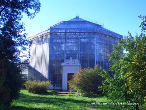 Оранжерея в Ботаническом саду.