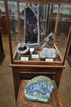 Музей ВСЕГЕИ. 2009.04.23.
