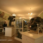 Музей Горного института