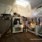 kukol-muzej/00_2450__kukol_6.jpg