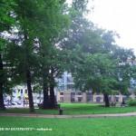 Воронихинский сквер