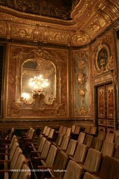 Фрагмент Бронзового зала в особняке А. А. Половцова. 2009.01.18.