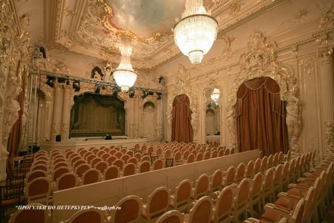 Белый зал в особняке фон Дервизов. 2009.03.08.