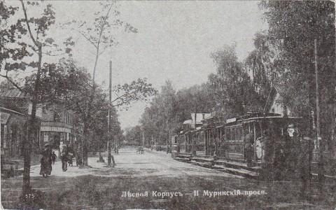 Лесной, 2-й Муринский проспект.