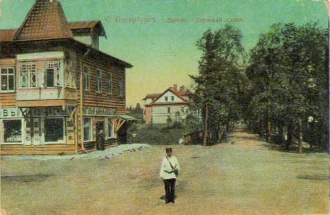 Лигово, Дерновая улица.