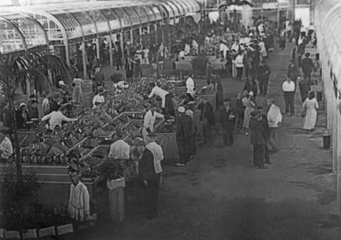 Федосеев В., Овощной ряд на Сенном рынке. август 1937 г..