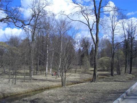 Парк Лесотехнической академии. 2007.04.14.