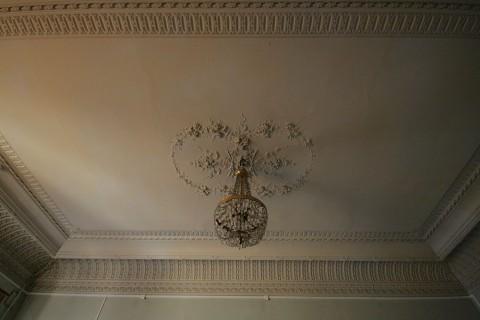 Плафон зала в особняке В. Ф. Утемана. 2011.11.20.