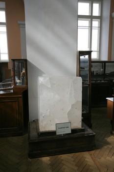 Каменная соль. 2009.04.23.