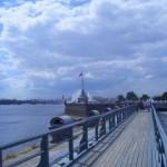 Вид со смотровой площадки (Невская панорама)