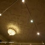 Плафон зала в особняке В. Э. Брандта